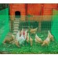Сетка для птичников 1*20 м (Зеленый)